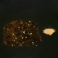 AP Growshop soil PRO + michorrhiza, 20L