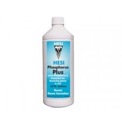HESI Phosphorus Plus