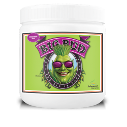 Advanced Nutrients Big Bud 130g
