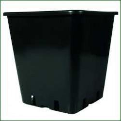 Square Pot 12X12X13CM 1.5L
